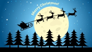 Merry Christmas PHC