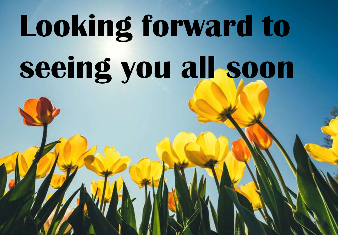 Looking forward to seeing you black yellow flower
